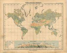 Carta geografica antica MAPPAMONDO CON REGIONI VEGETALI 1897 Old antique map