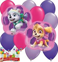 Paw Patrol Girls Party Supplies Skye and Everest Balloon Decoration Bundle