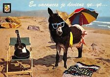 BT9226 en vacances je deviens ye ye donkey baudet france   animal animaux