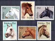 Chevaux Pologne (14) série complète de 6 timbres oblitérés