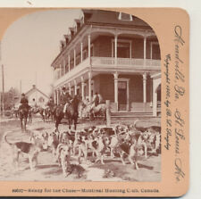 Hound Dogs ready for the hunt Montreal Hunt Club Canada Keystone Stereoview 1900