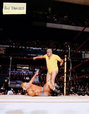 PRO WRESTLING 1965 MADISON SQUARE GARDENS NEW YORK PHOTO 3