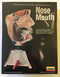 Lindberg Nose and Mouth Lifesize Model Kit #1339 New in Plastic 1987