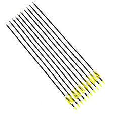 10 Fibreglass Archery Arrows with Steel Tip Suits Compound & Recurve Bow 31