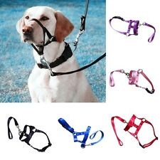 Large Pet Gentle Leader Dog Head Collar Training Dog Halter Harness Stop Pulling