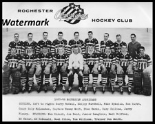 AHL 1957 - 58 Rochester Americans Team Picture 8 X 10 Photo Free Shipping