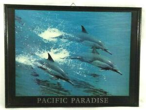 Poster dans son cadre Pacific Paradise Dauphins 30x40 cms  Envoi rapide et suivi