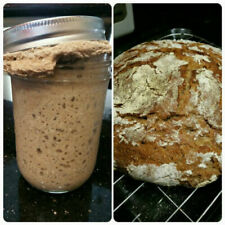 Organic Rye Flour Distinctive Sourdough Starter LOW GI LOW Gluten