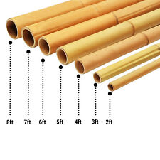 More details for 2ft-8ft heavy duty canes bamboo garden strong thick stakes support sticks  pole