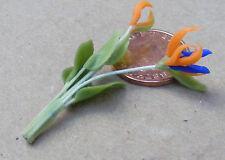 1:12 único Naranja Y Azul Ave Del Paraíso Casa de muñecas en miniatura de jardín de flores
