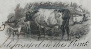 1865 Promissory Note Lansingburgh New York Original .5 cent stamp  Large size