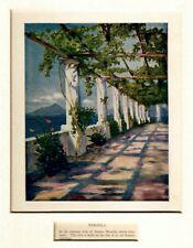 Anacapri: Villa San Michele: Pergola. Capri. Golfo di Napoli. Stampa Antica.1904