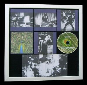 BLUETONES+Expecting Fly+LTD+GALLERY QUALITY FRAMED+EXPRESS WORLD SHIP+Not Signed