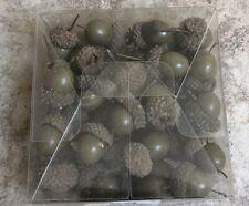 Box Set Of Decorative Acorns For Fall Autumn Crafts Green Acorns