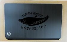 Clown Knife fish decal in 8 colors