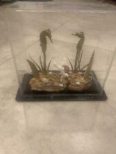 mid century lucite shadow box sea horse Sculpture Signed C Nalazek