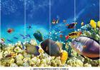 Sea Ocean Fish Coral Photo Underwater Life Wallpaper Wall Mural Bedroom Deco