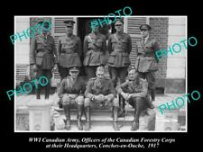 OLD 8x6 HISTORIC PHOTO OF WWI CANADIAN ARMY THE FORESTRY CORPS OFFICERS 1917
