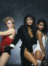 VANITY 6 / Denise Matthews * QUALITY CANVAS PRINT