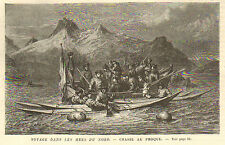 ISLANDE GROENLAND NORVEGE CHASSE AUX PHOQUES SEALS HUNT GRAVURE 1883