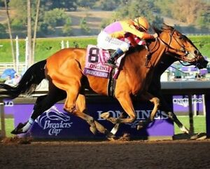 BEHOLDER 8X10 PHOTO HORSE RACING PICTURE