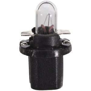 Wagner 17035 Instrument Panel Light Bulb - 2 PACK
