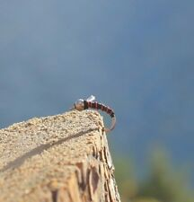 Fly fishing flies - The THRILLER Midge