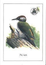FDC 2778 - Oiseau Buzin sur gravure format A4 !