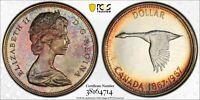 1967 CANADA GOOSE SILVER DOLLAR PCGS PL65 GEM COLOR UNC BEAUTIFUL TONED (DR)