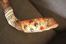 """40""""-42"""" Kudu Horn Shofar.Hand painted.One of a kind.Tallit and 12 tribes stones"""