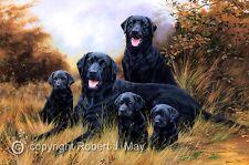 Black Labrador Retriever Limited Edition Giclee Print