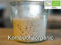 80g Organic 39 year old Wild Yeast Sourdough Starter Rye by Kombuchaorganic®