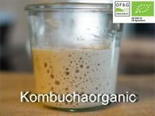 80g Organic 39 year old Wild Yeast Sourdough Starter Rye by Kombuchaorganic®