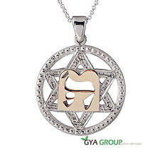 A Divine 925 Sterling Silver Star of David Pendant With 14K gold Hebrew letter