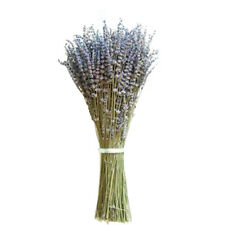 1 Bunch Lavender Natural Dried Flower Plant Grass Home Wedding Decor Purple Gift