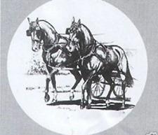 Reserveradhülle Radhülle Pferd Reitsport Zweispänner Friesen Achenbach Kutsche
