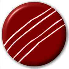 Small 25mm Lapel Pin Button Badge Novelty Cricket Ball