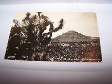 Vintage RPPC Postcard MEXICO #647 PIRAMIDE DE LA LUNA TEOTIHUACAN - Cactus