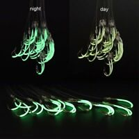 Luminous Fishing Tackle Sea Box Hook Strong Multi Sizes Fly Fishing Hooks CF