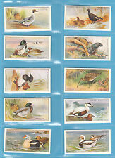 BIRDS - PLAYERS  -  C.C.S. PRISTINE SET OF 50 GAME  BIRDS  &  WILD FOWL  (REPRO)