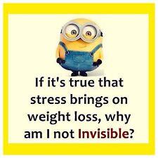 "4""x4"" Flexible Fridge Magnet Meme Funny Minion Stress Weight Loss Invisible"