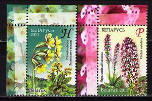 Belarus 2011 Sc758-59 Mi845A-46A 2v  mnh  Endangered Flowers