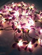 *35 FLOWER FRANGIPANI HOME FLORAL / BEDROOM CEILING LIGHTS *STRING LIGHTS*