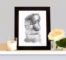 BABY ORANGUTAN and MOTHER Art Print Drawing Picture Sketch MOUNTED Present Gift