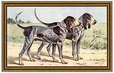 LE CHIEN BLEU DE GASCOGNE Haushund Basset MAHLER 34 gerahmt