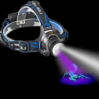 Adjustable Dual LEDs Zoom White + UV Light Headlamp Battery Powered Blacklight L