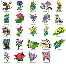 FLOWERS/FLORAL COLL V.1 - LD MACHINE EMBROIDERY DESIGNS