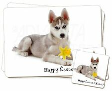 Personalised Name Husky Twin 2x Placemats+2x Coasters Set in Gift B, AD-H54DA2PC