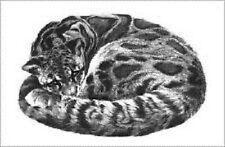 Gary Hodges Animals Art Prints