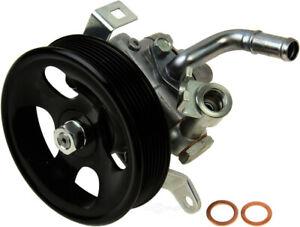 Power Steering Pump-Hitachi WD Express 161 38041 047